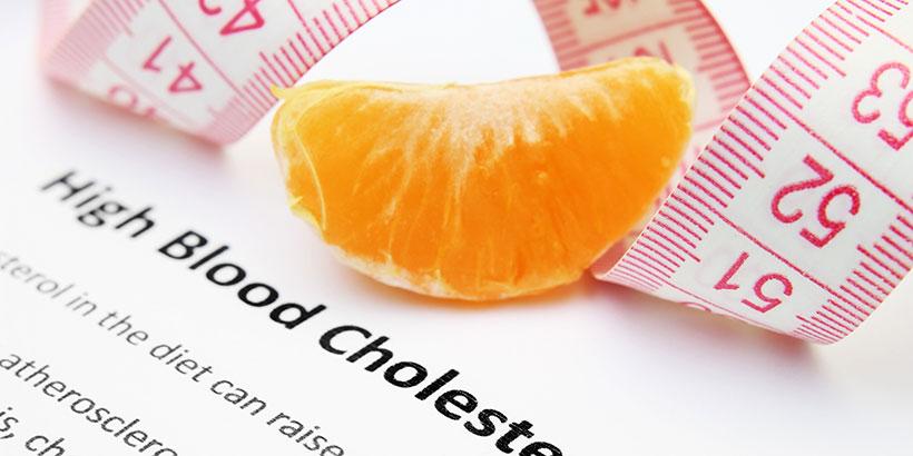 печень высокий холестерин
